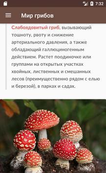 Мир грибов. Справочник apk screenshot