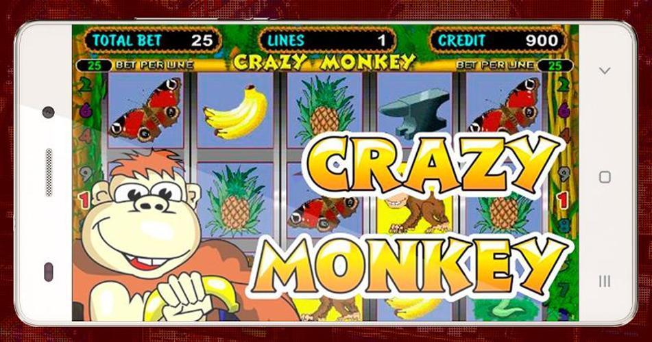 Pokerdom играть на деньги