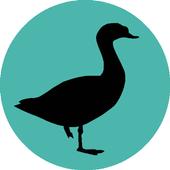 Progressive Goose Decoy icon