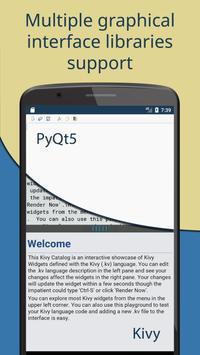 Pydroid screenshot 2