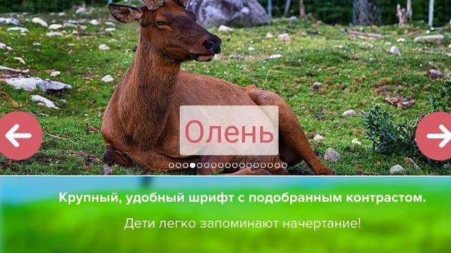 Карточки с животными учим screenshot 3