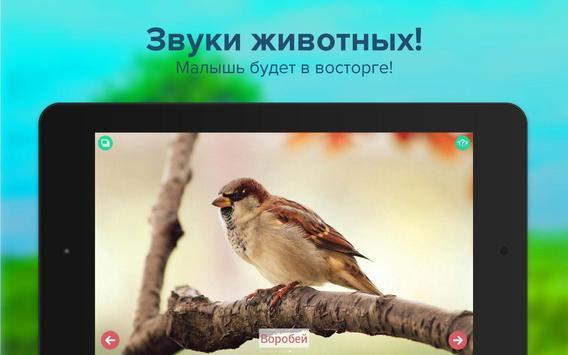 Карточки с животными учим screenshot 6