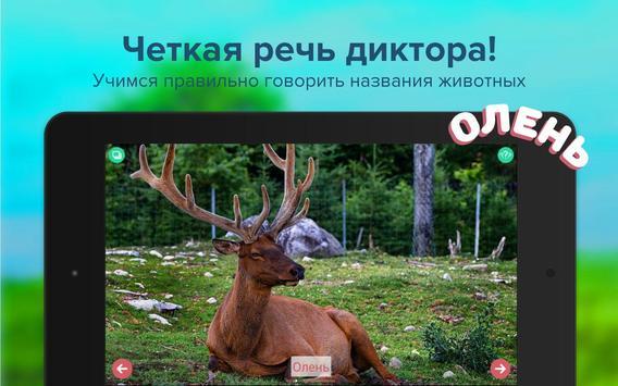 Карточки с животными учим screenshot 7
