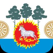 Мои Няндома и Каргополь icon