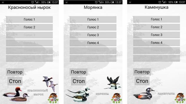 Манок на уток (нырковые) apk screenshot
