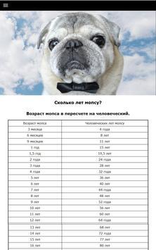 Мопс - выбор собаки screenshot 3