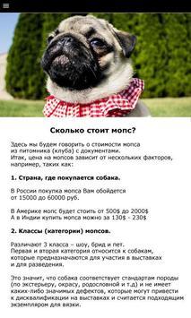 Мопс - выбор собаки screenshot 1