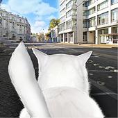 Cat In City Simulator icon