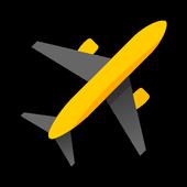 Yandex.Flights icon