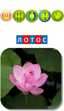 "Автоматизация звука ""Л"" в словах. Карточки ""ЛО"" apk screenshot"
