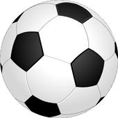 Football Soccer Fling icon