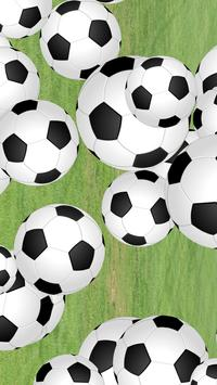 Football Soccer Fling poster