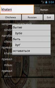Russian Chichewa Dictionary poster