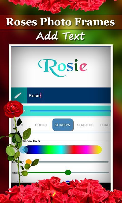 Roses Photo Frames poster