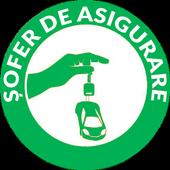Șofer de Asigurare icon