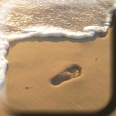 Walk on the Beach LiveWP icon