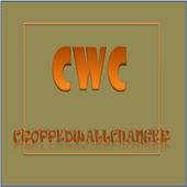 CroppedWallChanger icon