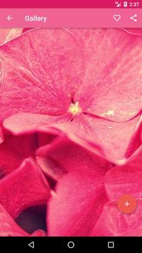 Pink Wallpaper apk screenshot