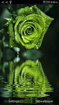 3D Rose Live Wallpaper apk screenshot