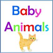 Baby Animals icon
