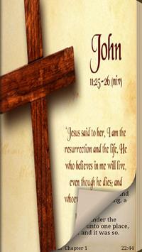Bible. New Testament. ASV poster