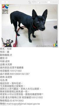 台北市流浪動物認養 apk screenshot