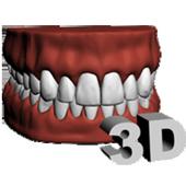 Dental Arch 3D icon