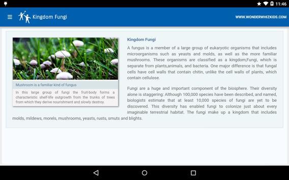 Kingdom Fungi apk screenshot