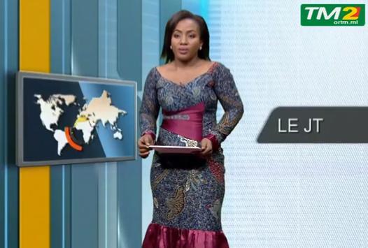 TM2 Mali TV screenshot 5
