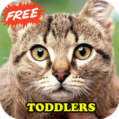 Toddler Animal Sounds Baby icon