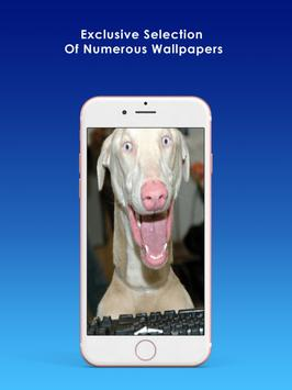 Funny Wallpapers & Background apk screenshot