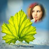 Leaf photo frames icon