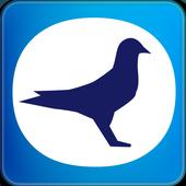 鴿神即時通 icon