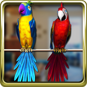 Talking Parrot Couple icon