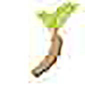 webviewapp icon