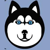 Tedy icon