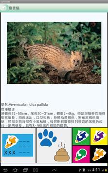 臺灣食肉目動物名錄 apk screenshot