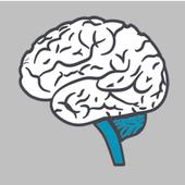 Beyin Testi Uygulaması icon