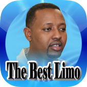 The Best Limo icon
