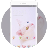Theme for cute kitten wallpaper icon