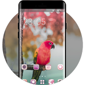 Theme for colorful lovely birds parrot wallpaper icon