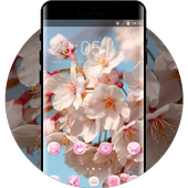 Spring theme blossom branch sky wallpaper icon