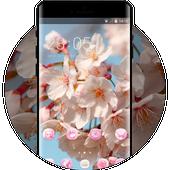 Spring theme blossom branch sky wallpaper simgesi