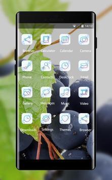 fruit theme screenshot 1