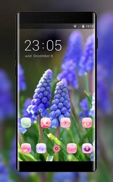 Emotion theme wallpaper muscari flowers leaves poster