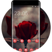 Emotion theme wallpaper red rose  stem flowers icon