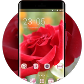 Emotion theme wallpaper rose flower petals bud icon