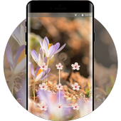 Flower theme early spring space interstellar icon