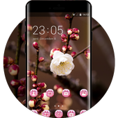 Flower theme for Nokia plum blossom wallpaper icon