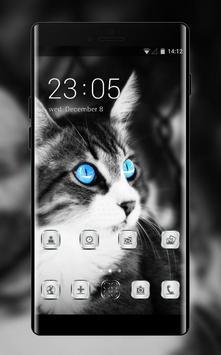 Pet animal theme wallpaper cat eyes blue black poster